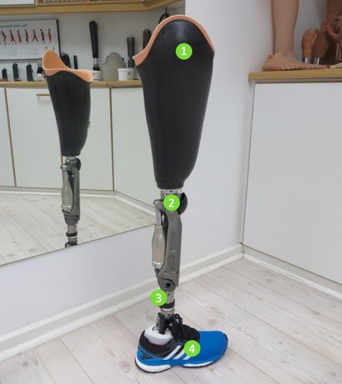 Long Prosthetic